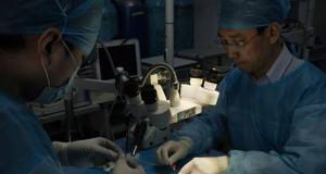 Dalla Cina: il trapianto di testa è possibile