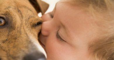 Sei bimbi vivono coi cani  crescono meno ansiosi.