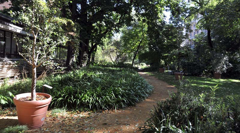 Tempo Libero. Sabato giornata di attività gratuite al Museo Botanico Aurelia Josz