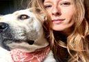 Assistenza veterinaria di base gratuita: pdl in Lombardia