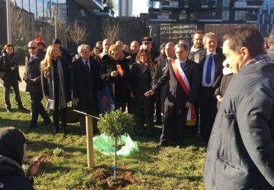 Milano: piantato un ulivo in memoria di chi è caduto nell'adempimento del dovere
