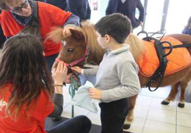 Milano: la prima volta di un cavallo in Pediatria