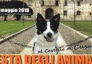 Festa degli animali al Castello di Cusago il 20 Maggio