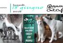 Il ciclo di eventi dedicati al mondo felino organizzato dal Crazy Cat Cafè di Milano. Una casa a misura di gatto.